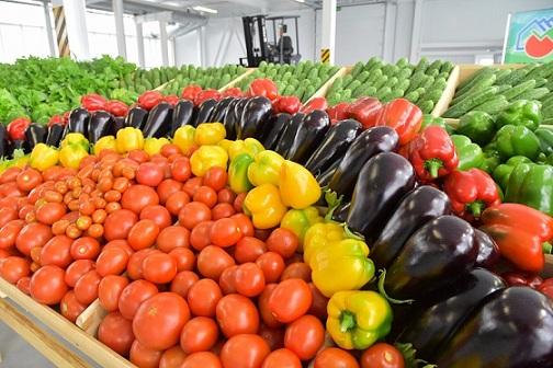 В Башкортостане «витрина сельского хозяйства» переживает предбанкротное состояние
