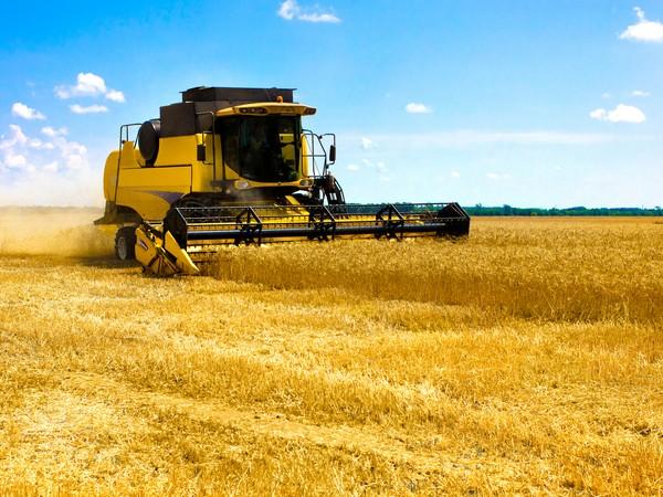 Русские аграрии продолжают сбор урожая