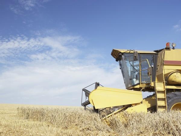 Аграрии Башкирии собрали больше зерна, чем в2014-м году