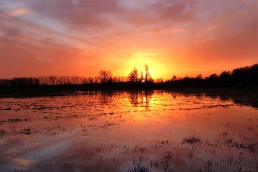 Ткачев: непогода нанесла урожаю вред в1,5 млрд руб.
