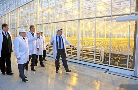 Петр Чекмарев - о тепличном комплексе в Свердловской области: «Это космос»