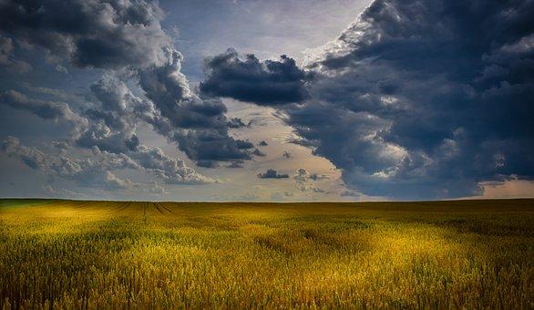 Фермерам Южного Урала предлагают развивать разнонаправленный бизнес