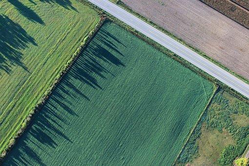 Президент РФ: «Производители зерна, несомненно, нуждаются вподдержке»