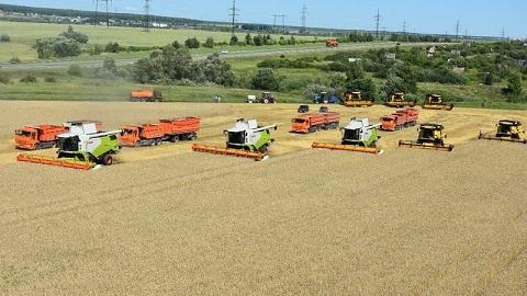 Аграрии Татарстана приступили куборке зерновых культур