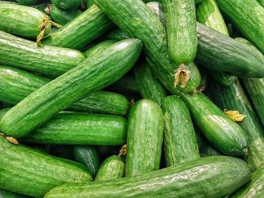 В Челябинской области сбор тепличных овощей уже на 5,5 тыс. т превысил прошлогодний урожай