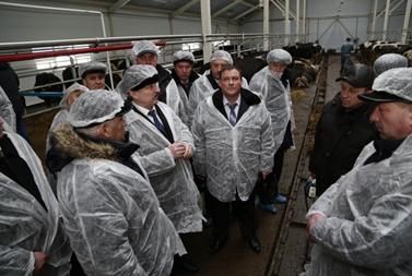 В Оренбургской области производство молока снизилось на 5,2%