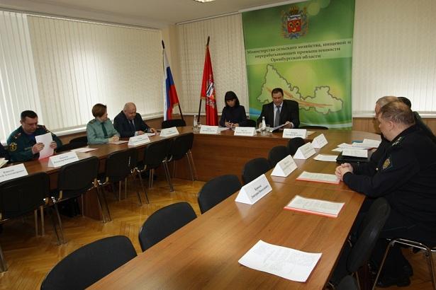 В Оренбургской области создадут противоэпизоотическую комиссию